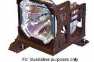 Bóng đèn máy chiếu DT00781